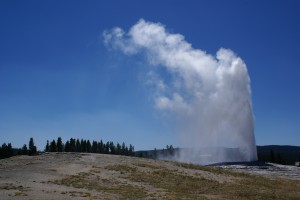 The Old Faithful geyser in action.