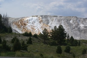 Travertine in the Upper Terraces area.  The travertine is white; the color comes from living organisms.