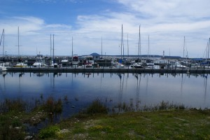 The St. Ignace public marina.