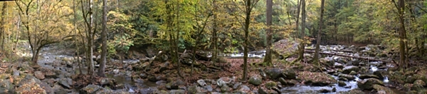 Panorama of the Middle Prong, GSMNP.