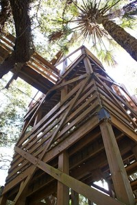 Entrance tower to canopy skywalk suspension bridge.