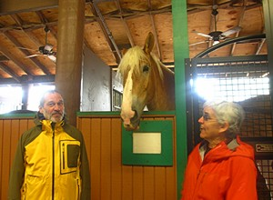 This horse with no name was very interested in us.  (Photo by Vickie Lintner.)