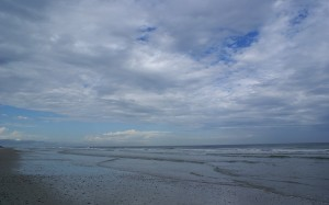 Looking north from North Beach at Little Talbot Island SP (FL).