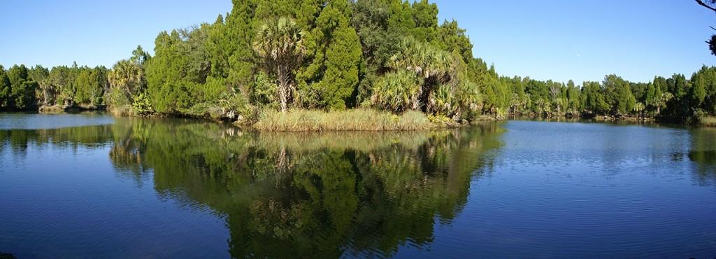 Crystal River Buffer Preserve SP (FL).