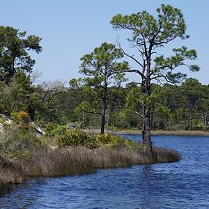 Powell Lake at Grayton Beach SP, FL.
