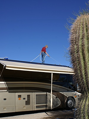 Rinsing down the roof of the coach (photo by Linda).