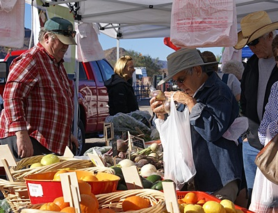 Linda makes her selections at the Quartzsite Farmers Market.