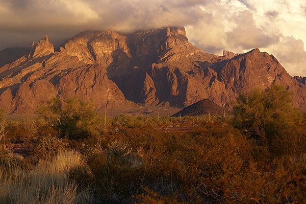 Palm Canyon at sunset.  KOFA National Wildlife Refuge about 20 miles south of Quartzsite, AZ.