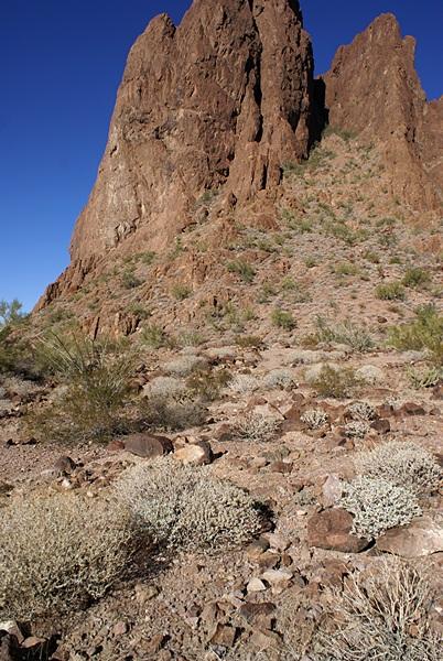 The north wall of Palm Canyon, KOFA NWR, AZ.