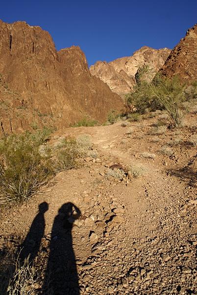 Looking back into Palm Canyon as we hike out.  KOFA NWR, AZ.