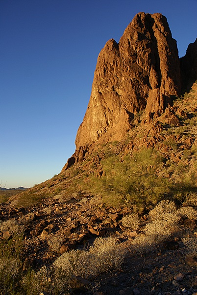 The north wall at the entrance to Palm Canyon in the glow of sunset.  KOFA NWR, AZ.