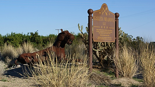 Galletta Meadows in Borrego Springs, CA.
