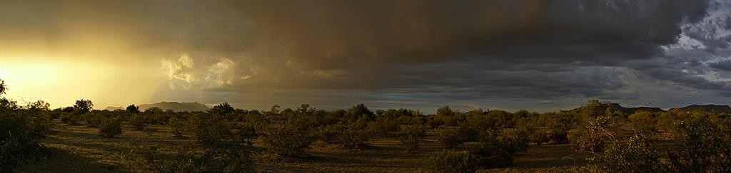 Panorama of a desert thunderstorm at sunset near Why, AZ.