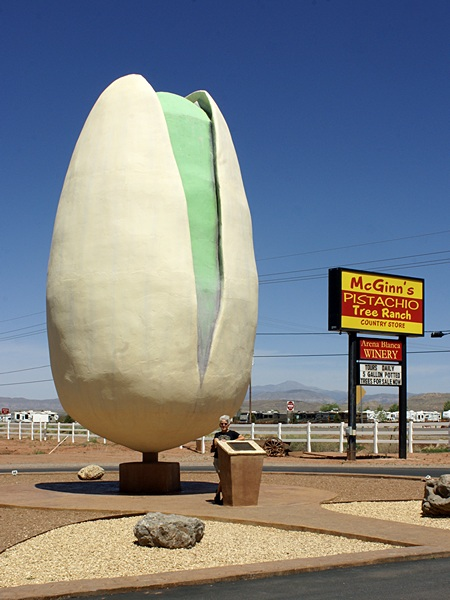 Linda poses with the world's largest pistachio.  Note the wind-blown hair.