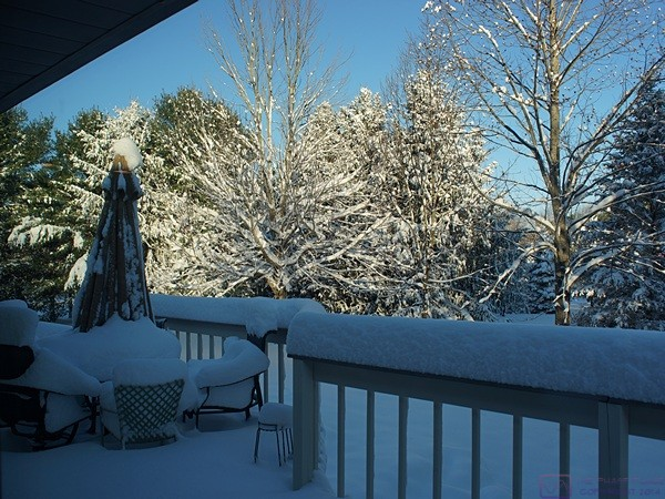 The view of our rear deck from our dining room the morning after our major snowstorm.  It's pretty if you don't have to go outside to pack a bus or drive in it.