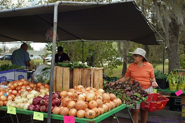 Linda looks over the fruits and vegetables at the Punta Gorda farmers market.