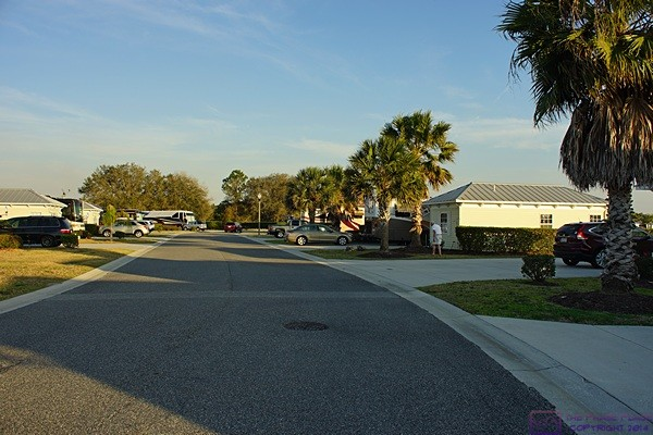 The view looking south from the in front of site #230 at Florida Grande Motorcoach Resort, Webster, FL.